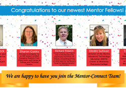 Congratulations to the 2020 Mentor Fellows