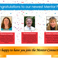 Congratulations to the 2020 Mentor Fellows